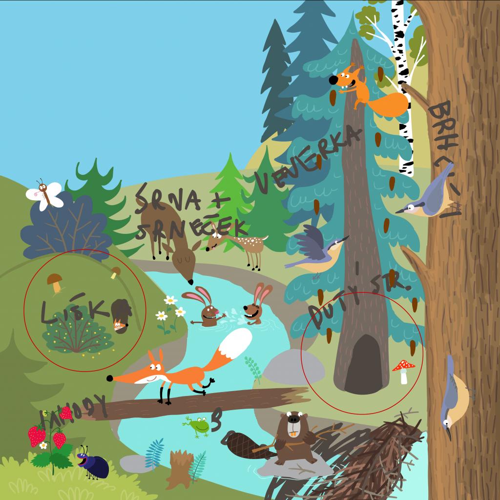 Jak vznikal Rok v lese a Rok v zahradě