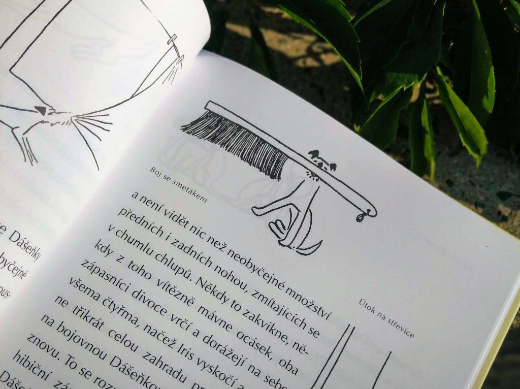 Ilustrace z knihy Dášeňka