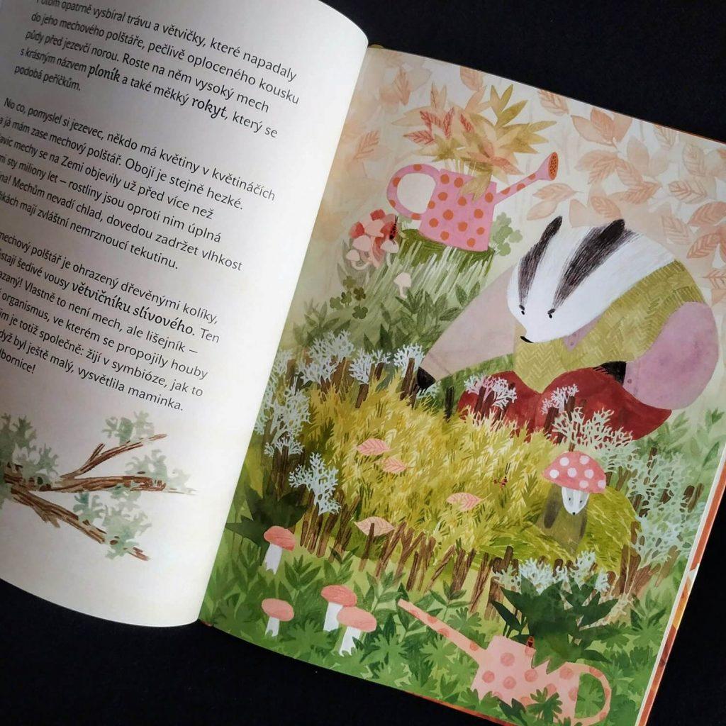 Ukázka z knihy Kdo roste v lese