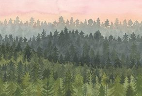 Ilustrace z knihy Kdo vidí Dima?